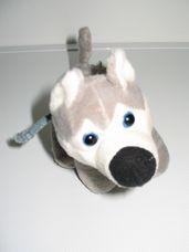 Husky plüss kutya