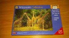 1000 darabos zsiráfok vadvilága kirakó (puzzle)