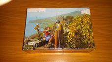 1000 darabos panorámás szőlőszüret kirakó (puzzle)