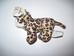 Lisa, a mini plüss leopárd bébi